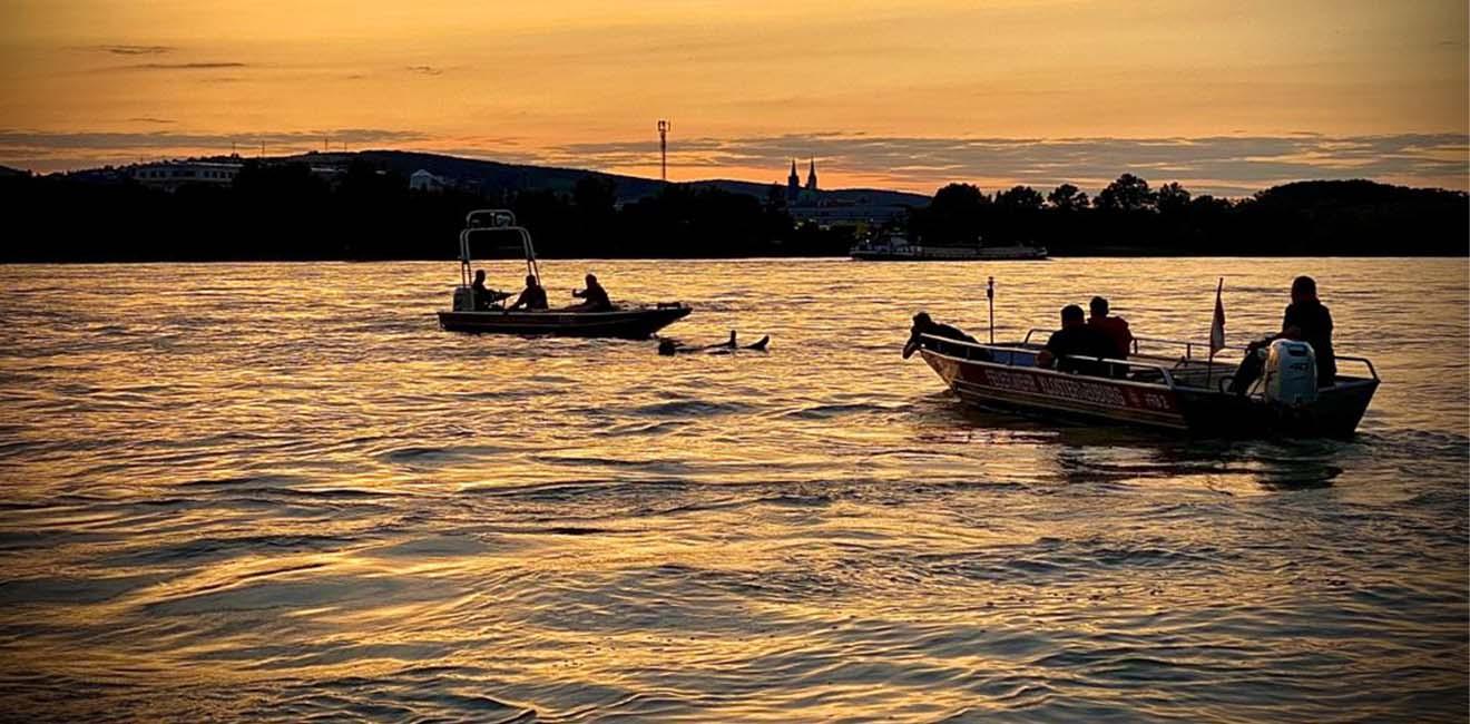 Slider_Donau